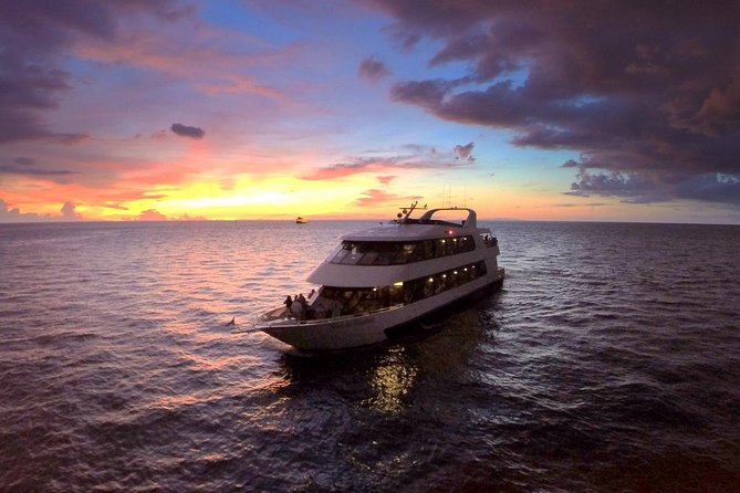 Take your date on a romantic cruise on beautiful Tampa Bay! Enjoy just the cruise or purchase dinner and drinks on aboard the luxury yacht, and then dance the night away under the stars as the captain and crew help provide you with a night to remember.