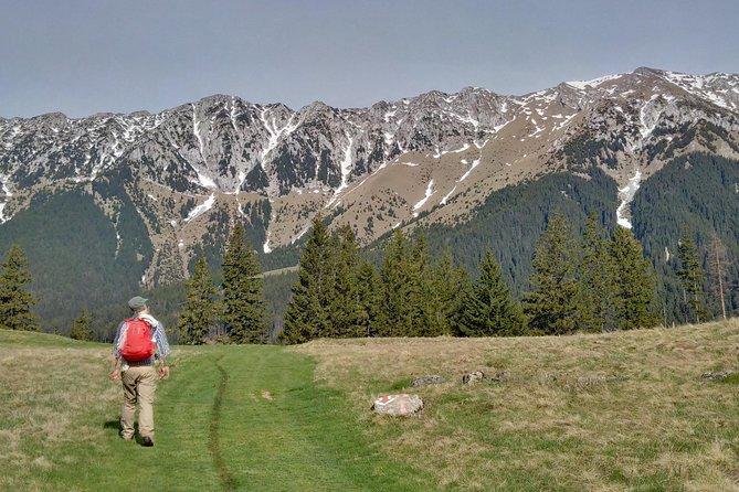 4-Day Carpathian Trek: Bucegi Mountains and Piatra Craiului National Park, Brasov, RUMANIA