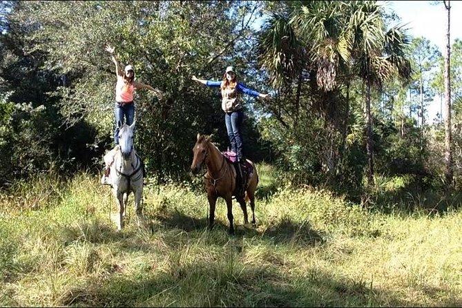 We offer guided horseback riding trails,lessons, and parties, Naples, FL, ESTADOS UNIDOS