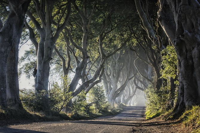 Visit the Giant's Causeway and some of Northern Irelands most stunning Game of Thrones Filming locations<br>You will not only get to visit the Unesco Giants Causeway and have time to explore Belfast on our way back<br>Visit And explore scenes like the ones below<br>-Dark Hedges- Where Arya, Hot pie and Gendry escape on the kings Road<br>-Pike- Where theon returns for the first time aster being released as a ward<br>-Theon gets Baptised after returning to The iron Islands<br>-Pike- The drowning and crowning of Euron<br>-Balon Greyjoy- Funeral of Theon and Yara's Father as he is push into the sea<br>-Ballintoy Harbor- Milisandra burns the Bannerman for Stannis<br><br>