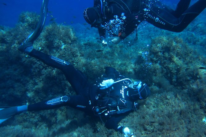 MAIS FOTOS, Scuba Diving Courses
