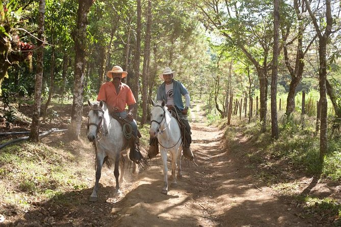 "During this private tour you will discover two beauties in the north of Nicaragua: Miraflor Natural Reserve and its rural communities, which have created a cooperative and have focused on tourism as a way of local development, and Somoto Canyon, an incredible natural monument which was ""discovered"" less than a decade ago."