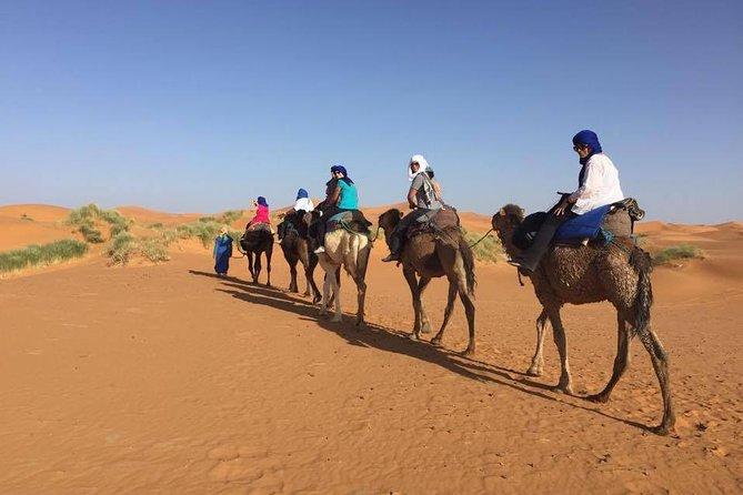 Excursão de 3 dias no deserto de Fes para Marraquexe, Fez, MARROCOS