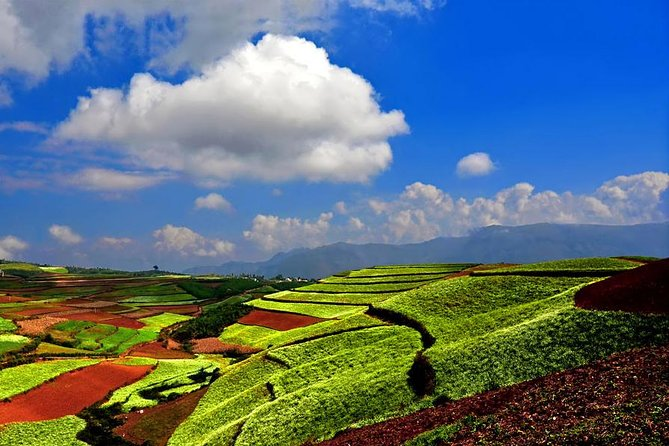 """In the 2 days Photography Tour, you will use your camera or cell phone to take the pictures of Dongchuan Red Land. It is loved by photographers and backpackers, and praised as """"God's palette"""". The tour is including thetransfers and tours with local English speaking guidesin private air-conditioned vehicles , and 2 Chinese lunches and 1 Chinese dinner."""