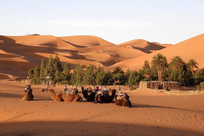 Excursión privada de 5 días en las ciudades imperiales de Marruecos desde Casablanca, Casablanca, MARRUECOS