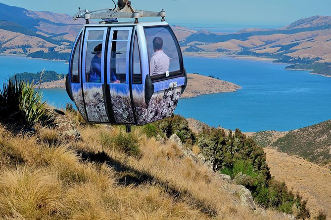 Celebrate the recovery of Christchurch following the 2011 earthquake, and take a trip aboard the Christchurch Gondola. The upgraded cable car takes you on a scenic journey to the Port Hills crater rim and Mt Cavendish summit, giving you fabulous views of Christchurch's dramatically changed cityscape. See Canterbury Plains and Lyttelton Harbour unfold as you rise to the revamped summit complex, on the crater rim of Christchurch's famous extinct volcano. To see even more of Christchurch, add a shuttle bus tour at the Christchurch Botanic Gardens or go Punting on the Avon River.