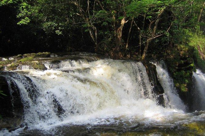 Tour to Presidente Figueiredo: Amazon Waterfalls, Manaus, BRASIL
