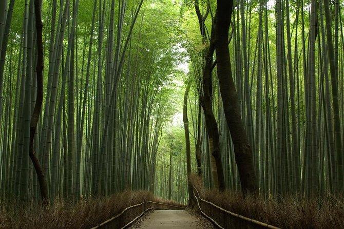 Kyoto and Nara 1 Day Bus Tour, Kioto, JAPAN