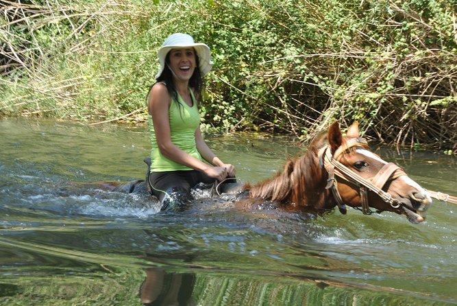 Marmaris Horse Safari, Pick up from Marmaris, Icmeler & Armutalan, Marmaris, TURQUIA