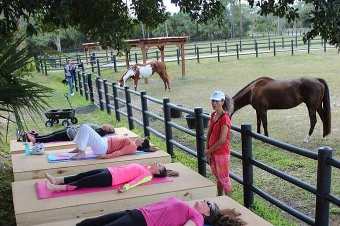 Join us on an experiential journey starting at Dovecot Farm. Our equestrian retreat is a stunning sanctuary space located in the heart of Loxahatchee Groves. <br><br>Dovecot Farm is different. We strive to make a difference. <br><br>We offer an emerging form of coaching incorporating horse interactions. Our programs are non mounted, this is a hands on healing experience.<br><br>We blend equine learnings, resilience breathing techniques and mindfulness to create a memorable wellness experience.<br><br>We will take in the sights & sounds of the Farm with journaling, silent meditation & heart centered breathing techniques. After a cup of tea in our beautiful farmhouse, we will head out to the Royal Palm Beach Pines Natural Preserve. This is a 5 minutes walk to a very special preserve, I have access to a private residents entrance to the 773 acre natural area. We will observe the indigenous flora, trees & birds who reside in the area.<br><br>After taking photos, we will head back to Dovecot Farm to complete our journey.