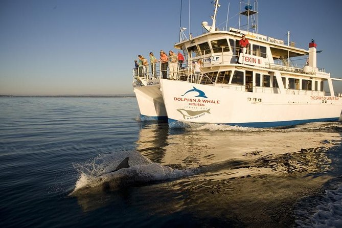 Enjoy the world-renowned dolphin watch cruise on Tekin III - the Spirit of Jervis Bay for the opportunity to see dolphins playing in the crystal clear water of Jervis Bay, home to the largest population of resident bottlenose dolphins in Australia and the whitest sand in the world.