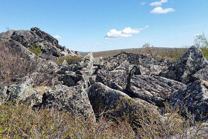 Hike into the Wilderness at Wickersham Dome, Fairbanks, AK, ESTADOS UNIDOS