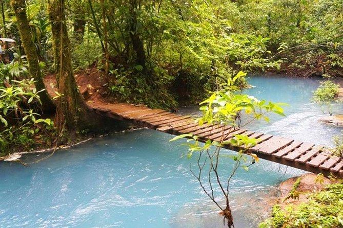 Rio Celeste Hiking, Sloth Sanctuary & Llanos de Cortes Waterfall Tour, Tamarindo, COSTA RICA