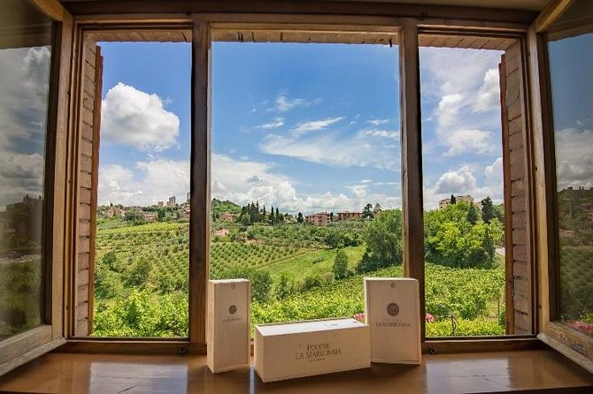 Wine & Evo oil tasting with Tuscan Meal, San Gimignano, ITALY