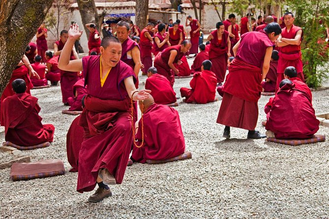 Tibet Entry Permit Plus Jokhang Temple & Barkhor Streets and Sera Monastery Tour, Lhasa, CHINA
