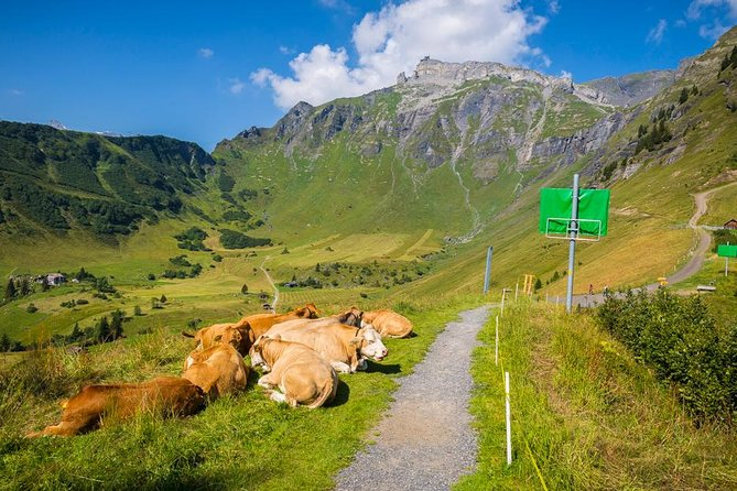 Lauterbrunnen Waterfalls & Mountain View Trail Photo Tour from Grindelwald, Grindelwald, SUIZA