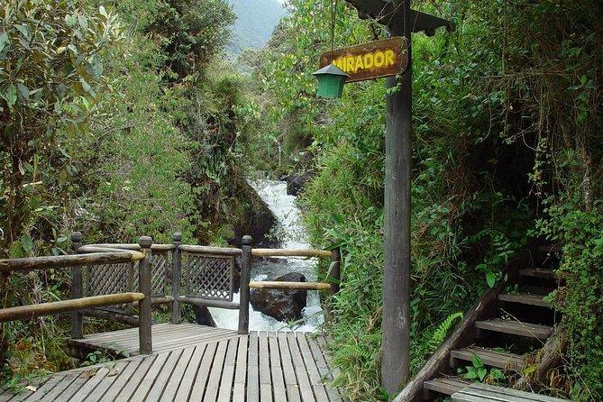 Escapada de un día al spa Termas de Papallacta desde Quito, Quito, ECUADOR