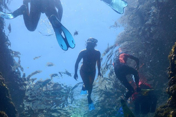 Snorkeling: the sunken treasures of Leuca, Lecce, Itália