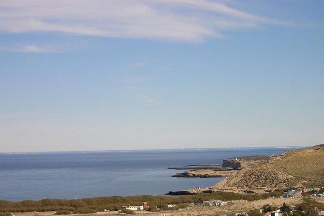 Peninsula Valdes National Park Day Trip, Puerto Madryn, ARGENTINA