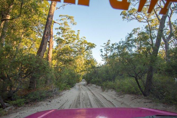 3 Day 4wd Tagalong Tour - Fraser Island, Fraser Island, AUSTRALIA