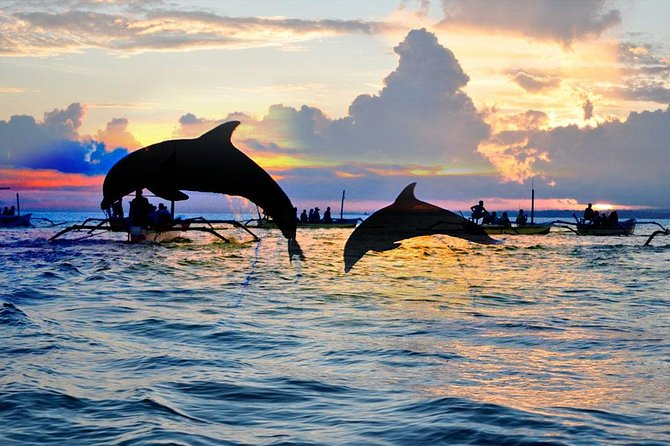 Amazing Bali Dolphin Watching Trip Experience is one of the most popular tour Packages to see hundred of dolphin free swimming on the ocean. The tours will start at 03.30 AM from your hotel then we will drive you to Lovina Beach, to watching dolphin you will use traditional boat where the dolphin habitat free release, jumping and swimming in the ocean with spectacular sunrise view. Then our next destination we will take you to visit Lake Tamblingan and Lake Buyan, this site located in Bedugul rain forest. Our next journey is visiting Handara Gate, It has become a famous Instagramable spot in Bali. Lunch will be serve at a restaurant in Bedugul area, after lunch finish we will take you to visit Ulun Danu Beratan Temple, it's set at lakeside of Beratan with beautiful view and hills surround it also cool atmosphere and hills as a backdrop. The tour will be very comfortable with our private air conditioning car transfer.