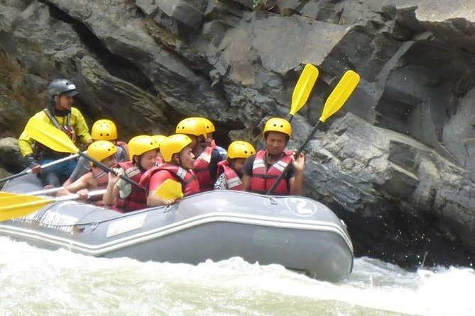 We make this tour for the people who have very short time but want to enjoy both Adventure and wildlife, it is very enjoyable holiday where you will cerebrate your life time experience.