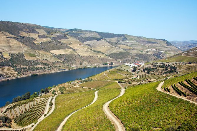Douro Valley Full-Day Tour with Lunch and Wine Tasting from Braga, Braga, PORTUGAL