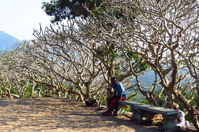 Private Day Trip to Sigiriya Rock Fortress and Dambulla Cave Temple, Sigiriya, SRI LANKA