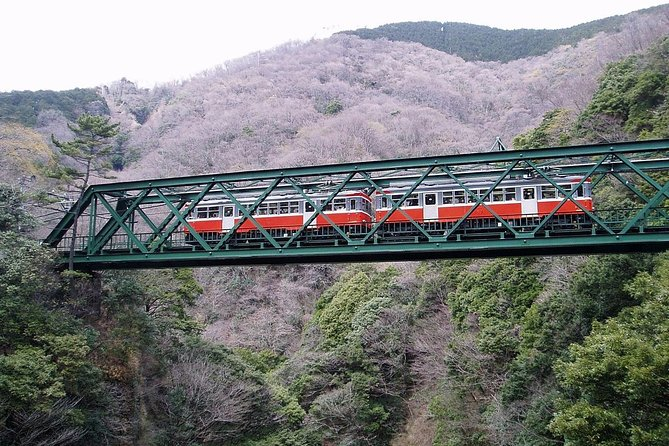 Exciting Hakone - One Day Tour from Tokyo, Hakone, JAPON