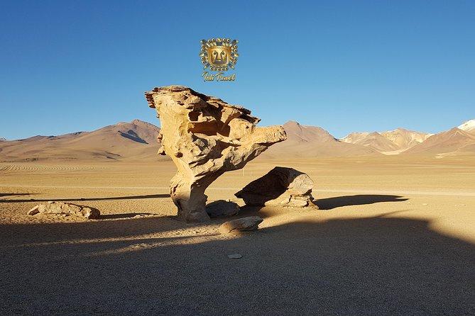 Uyuni Salt Flats And Colored Lagoons_3 Days_shared Tour_english Speaking Guide, Uyuni, BOLIVIA