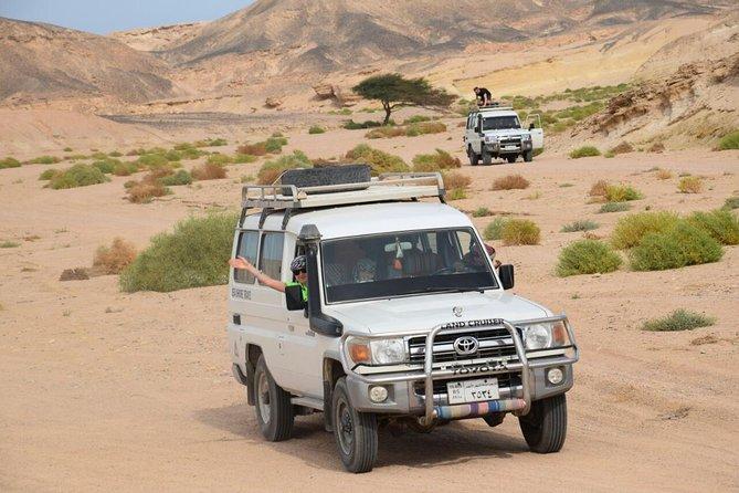 Excursion in red sea marsa alam, Marsa Alam, EGIPTO