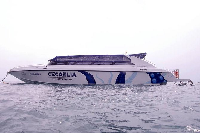 Full-Day Diving and Snorkeling in Koh Tao, Koh Samui, Tailândia