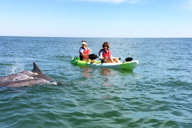 Paddle through the coastal waters of Virginia Beach and watch for Atlantic Bottlenose Dolphins in their natural habitat during this 2-hour, small-group kayak adventure. Little or no experience is necessary to steer the sit-on-top kayaks used during this tour. Guides will help you launch and navigate your kayak along the coast as you explore.