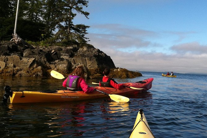 Take a 4-hour guided kayak tour to Clover Pass, with scheduling to fit virtually every cruise ship. This is an amazing waterway with several rainforest islands, about 15 miles north of town. Your guides will get you away from the masses as you paddle scenic island shorelines where dense rainforest meets the sea. The Tongass National Forest is the largest National Forest in the U.S. and surrounds Clover Pass. Most tours encounter the resident Steller sea lions, seals, lots of eagles and other birds, a huge variety of inter-tidal life, and sometimes humpback whales, orcas, porpoises and jumping salmon along the route as well. Depending on the time of year we even see the occasional Sitka deer or black bears down at the beach.