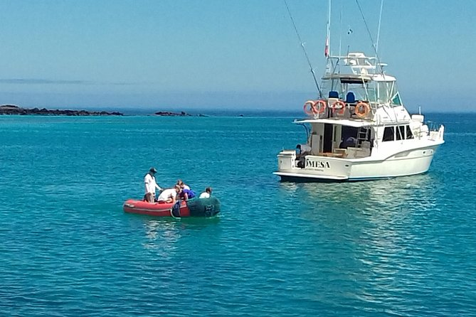 The Galapagos Genesis (GL4) is an 8-day program to explore the Galapagos islands on an Island-Hopping Tour. Accommodation is in hotels on Santa Cruz Island and Isabela Island. The program includes whole-day and half-day excursions to distinct parts of the national park, including uninhabited islands.