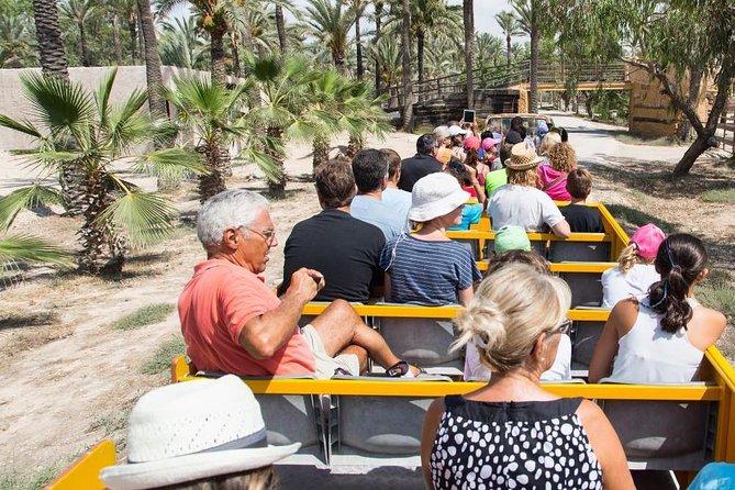 Río Safari Elche con transporte desde Benidorm, Benidorm, ESPAÑA