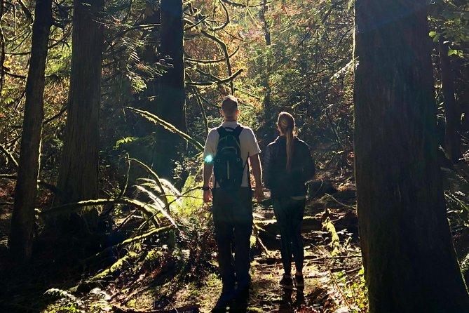 MÁS FOTOS, Mystical Rainforest Tour: Forest Bathing & Nature Mysticism