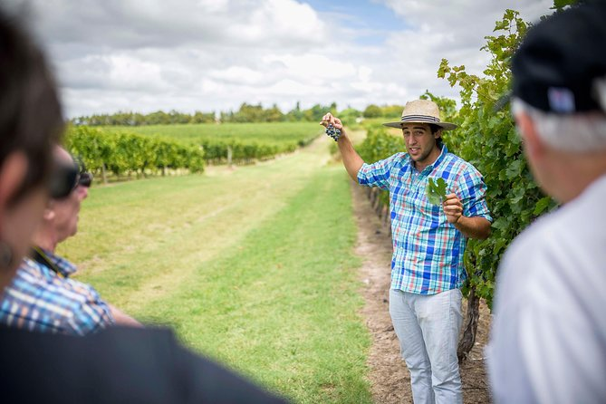 It is a great opportunity to discover the highlights of Montevideo and a wineries where the best wine from Uruguay is produced. All this as a single experience.