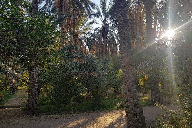 Desert tour in 4 days, Tunez, Tunísia