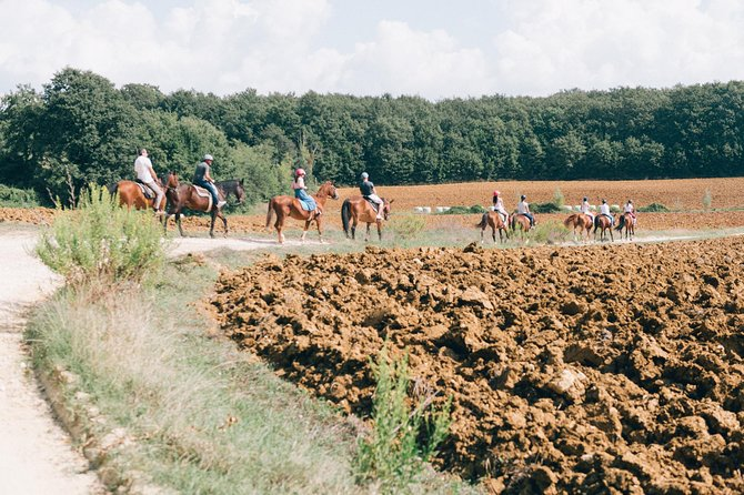 Horseback Riding Tour with wine tasting from Siena, ,