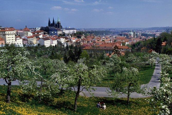 Recorrido de día completo por Praga con crucero por el río Moldava, visita al Castillo de Praga y almuerzo, Praga, REPUBLICA CHECA