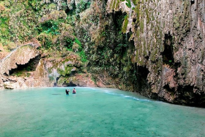 This package is offered by Cebu Tours, so you will fully enjoy your trip to the south of Cebu. Swim and snorkel with the gentle giants in Oslob and be amazed how beautiful these creatures are. After snorkeling and swimming with the whale sharks, visit the amazing water falls in Oslob, the Tumalog falls, which is just 10 minute drive from the whale shark watching area.<br><br>After Oslob, Visit Kawasan Falls in Badian, a three-stage cascading waterfall and one of the most beautiful falls in the Philippines. It is an hour drive from Oslob and you will be accompanied with our experienced driver. In Badian, you will meet the local guide and he will be with you going to Kawasan falls until you finished swimming. Enjoy the south of Cebu within one day with this very affordable package. <br>