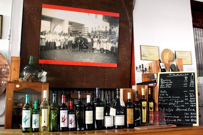 Visit Bodegas Teneguía winery in La Palma, La Palma, ESPAÑA