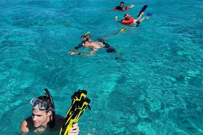 Shore Excursion: Horseback Riding with Monkey/Sloths Hang-out and Snorkel, Roatan, HONDURAS