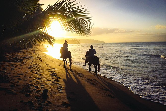 Finish the perfect day in the Dominican Republic by watching the sun set across the horizon. This 2 hour horseback tour will leave you speechless as you enjoy the amazing scenery via horseback. This is the perfect way to end your day with a loved one.