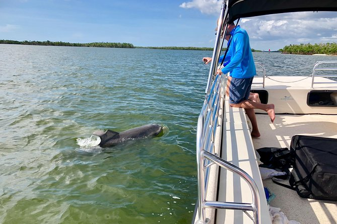 Eco Endeavors can accommodate up to 12 guests on an Adventure based Eco-Tour through The Ten Thousand Islands of south Florida on our custom built, United States Coast Guard Inspected vessel. Throughout the duration of this 3 hour trip, guests will have the opportunity to see abundant wildlife up close such as dolphin and manatee. We will also stop at an isolated barrier island only accessible by boat to search for rare shells, swim or snorkel. Check us out at EcoEndeavors.org.