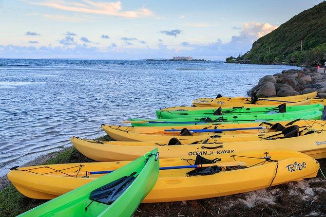 Bio Bay Night Kayaking - 8:30pm Round-trip Transportation from San Juan Area, Luquillo, PUERTO RICO
