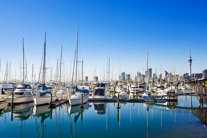 Private Tour: Auckland City and Countryside Tour, Auckland, New Zealand