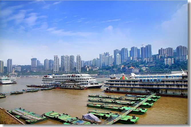 Half-day Private tour of Chongqing Zoo with Transfer to Chongqing Airport, Chongqing, CHINA