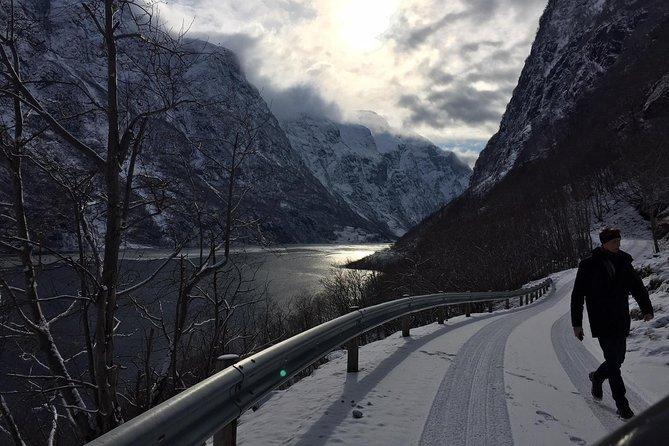 The Scenic Roadtrip - Oslo to Bergen via the fjords by private van, Oslo, NORUEGA